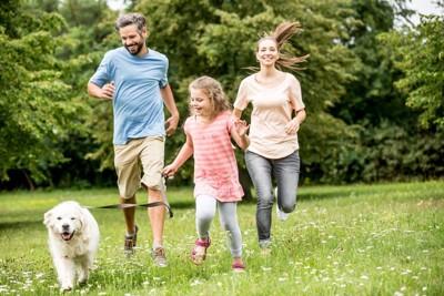 走っている家族と犬