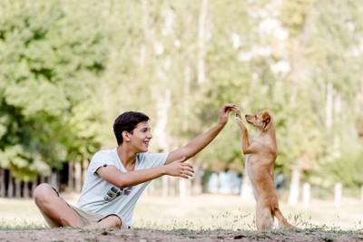 小型犬と遊ぶティーン男子