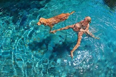 犬と泳ぐ人