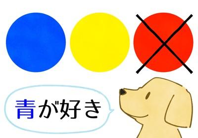 犬の色別認識力