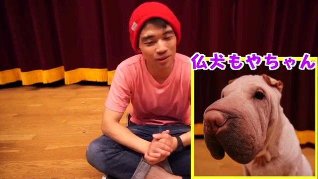 仏犬~字幕