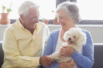 犬を抱く老夫婦