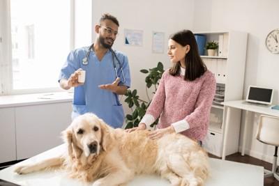説明する獣医師と犬と飼い主