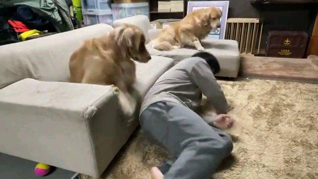 寝転がる人