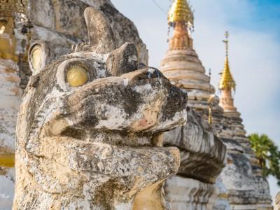 ミャンマーの遺跡の犬