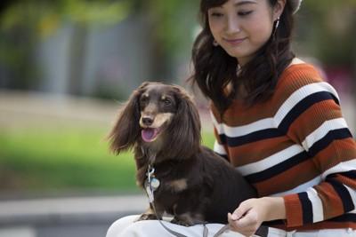 屋外で飼い主の上に座っている犬