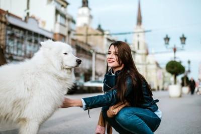 しゃがんで犬を触ろうとする女性