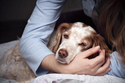 悲しい顔をした犬を腕に抱きかかえる女性