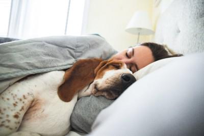 女性と一緒に寝ている犬
