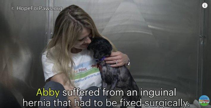 犬を抱き寄せる
