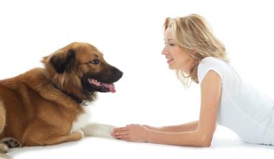 犬と向かい合って話しをする女性