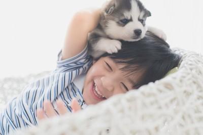子供と一緒に遊ぶ子犬