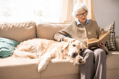 ソファーに座る飼い主に寄り添ってくつろぐ犬