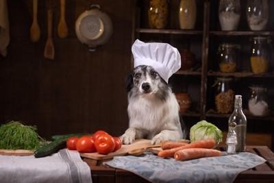 料理人風な犬と野菜