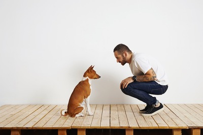 向かい合って座る犬と男性