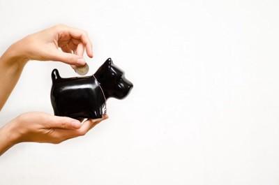 黒い犬の貯金箱