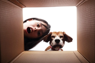 箱を覗き込む犬と女性