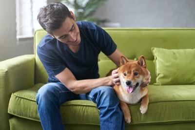ソファーに座る犬と男性