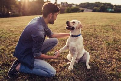 しゃがんで犬と握手する男性