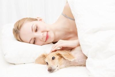 女性と一緒にベッドで横になる犬