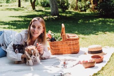 犬とピクニックを楽しむ人