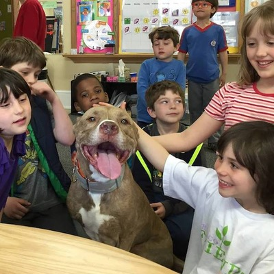 子供に囲まれる犬