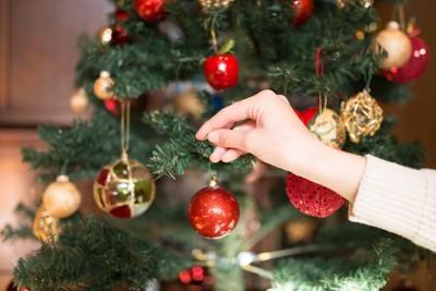 クリスマスツリーにボールを付ける人