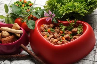 野菜とドッグフード