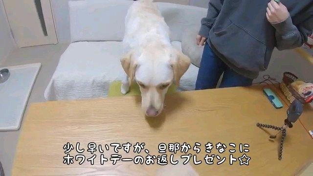 少し~字幕
