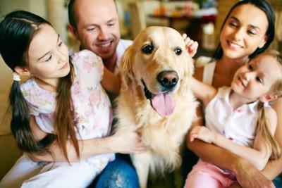 レトリバーとその家族