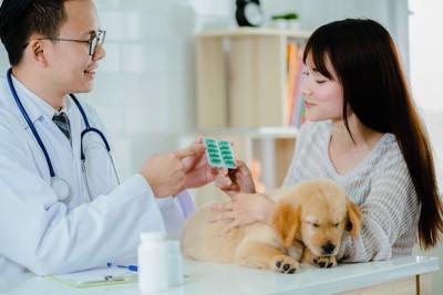 獣医師と飼い主の女性