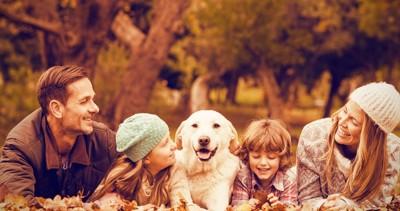 家族の真ん中に座る犬