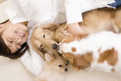 仲良く寝転んでいる犬と女性