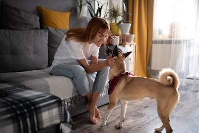 女性に近寄る犬