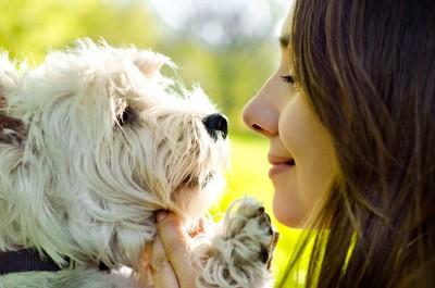 女性を見つめる犬