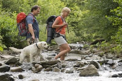 川を渡る犬と男性と女性