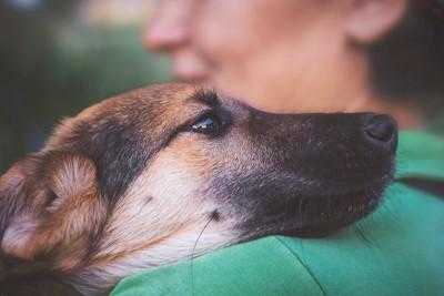 飼い主に抱きしめられている犬