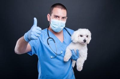 グットのジェスチャーをする獣医さんに抱えられる犬