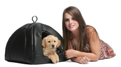 犬とピクニック