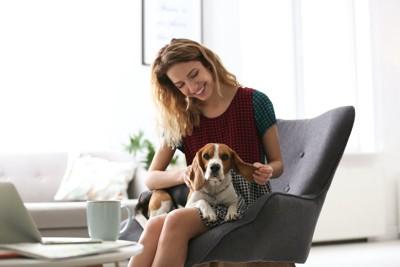 椅子に座る女性の膝の上で寛ぐ犬