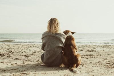 海で女性に寄り添う犬の後ろ姿