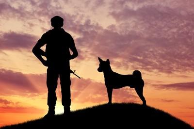 兵士と軍用犬の陰