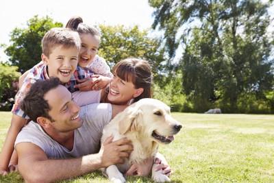 家族と一緒にアウトドアを楽しむ犬