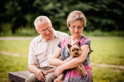 小型犬を抱いてベンチに座る年配のカップル