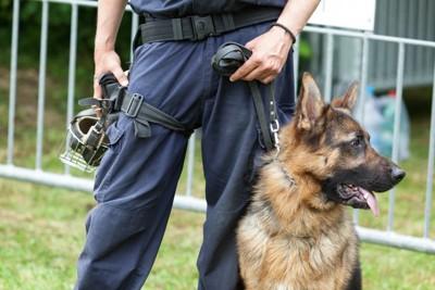 警察官の横に座る警察犬