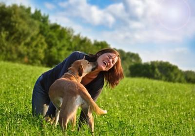 草原にいる飼い主さんと犬