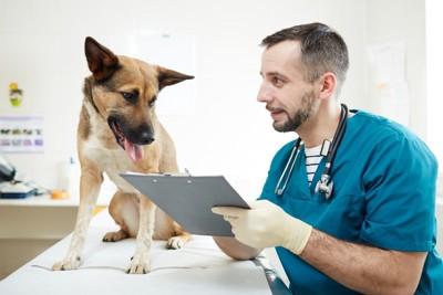 診察について節目している医者と話を聞く犬