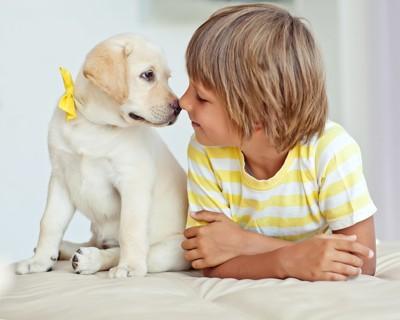 見つめ合う子供と犬