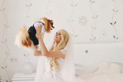花嫁に抱きあげられる犬