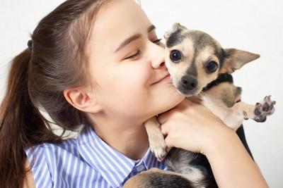 女の子に抱っこされる小型犬